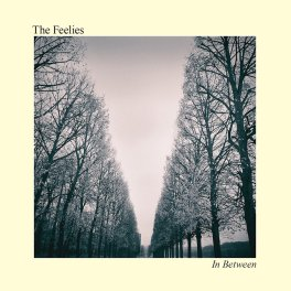 the-feelies-in-between