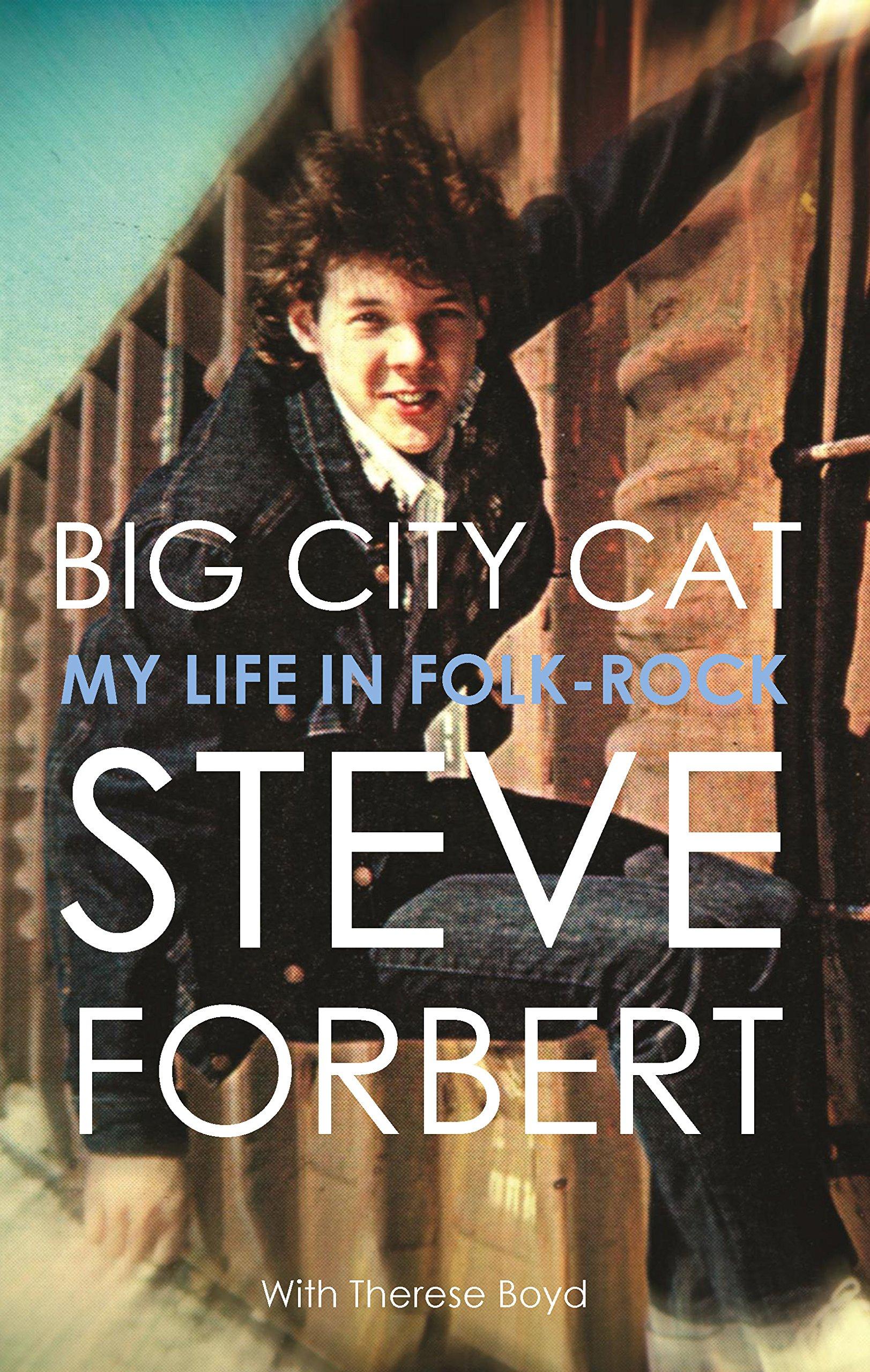 Big City Cat