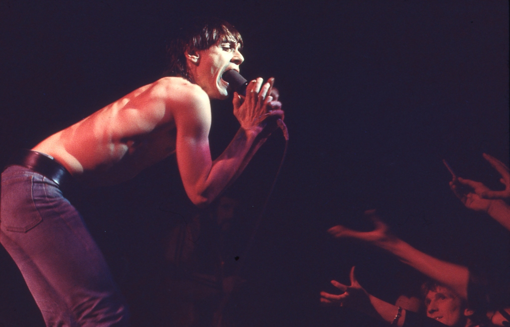 Iggy Pop in performance